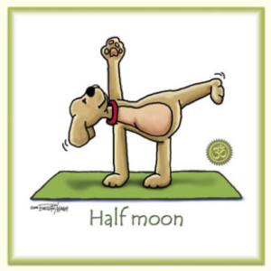 half moon pose