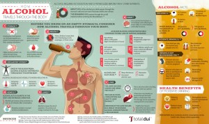how-alcohol-travels-through-the-body_50ca3deb65aab_w1038
